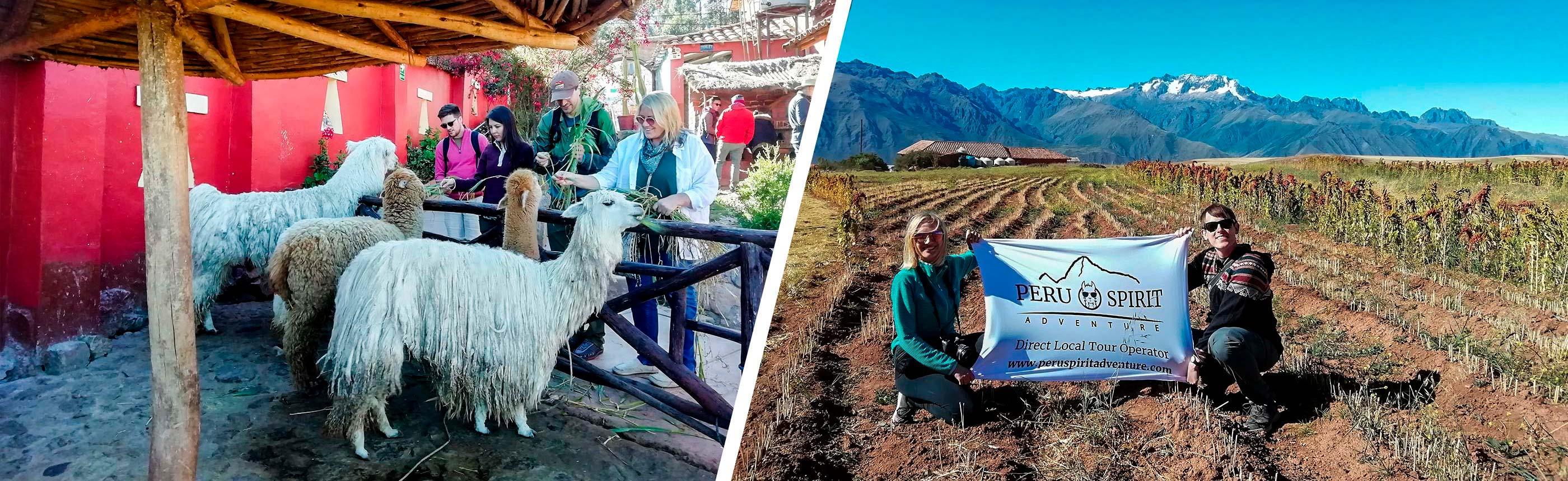 Sacred-Valley-Pisac-and-ollantaytambo-Tou